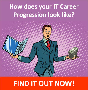 How does your IT career progression looks your?