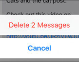 How to Delete or Forward Individual Text Messages on the iPhone<br><br>