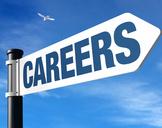 Is SEO A Good Career Option?
