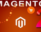 Open your first Shop Step by step MAGENTO 2 Free Edition