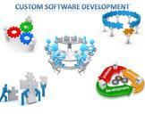 Custom Software Development- A Business Resource