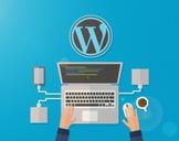 Become a WordPress Developer From Scratch