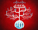 Cisco Networking CCNA OSPF