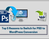 Top 5 Reasons to Choose the PSD to WordPress Responsive Design for Business<br><br>
