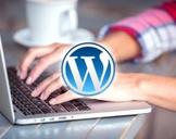 Simple Advanced WP Blog Training
