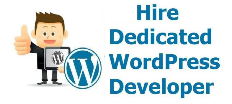 Hire WordPress Developers: Points To Consider While Taking The Services - Image 1