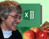 The Beginning Guide to Microsoft Excel 2013