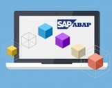 Learn SAP ABAP Objects - 2014 - Online Training Course