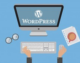 WordPress – The Complete Business Web Design Course