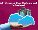 Why Managed Cloud Hosting is best for business?
