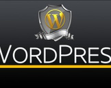 WordPress Guide - Beginner To Professional From Scratch
