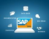 Introduction to SAP DMS Document Management System–SAP PLM
