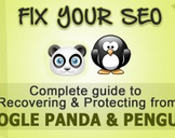 Learn How To Recover From Google Panda and Penguin - SEO Fix