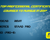 5 Top Professional Certification Courses To Pursue in 2017!
