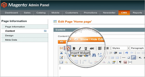 What is Magento Widgets ? - Custom magento widgets – An summary overview of magento widget - Image 1