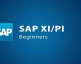 SAP XI/PI Beginners