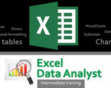 Excel 2013 Data Analyst Intermediate Training