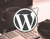 Guide to Using WordPress to Make Pro Websites Efficiently