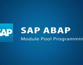 SAP - SAP ABAP Module Pool Programming