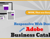 Responsive Web Design using Adobe Business Catalyst