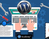 Complete WordPress Mastery, Course + Themes + Service Bundle