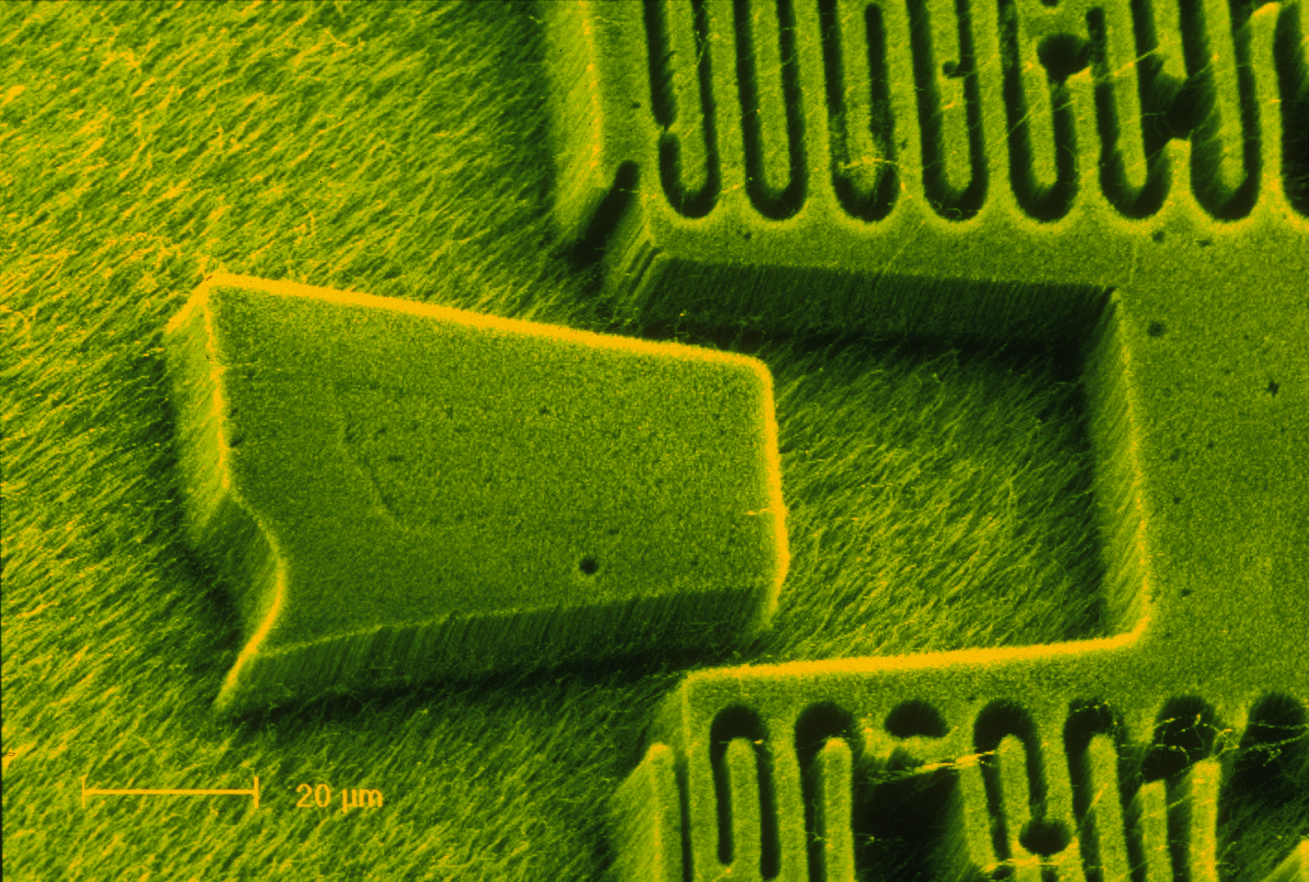 When 3D Printing Meets Nanotechnology... - Image 1