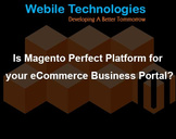 Is Magento Perfect Platform for your eCommerce Business Portal?