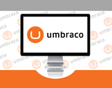 Umbraco, the little guy who hits a home run every time!