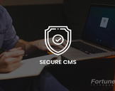 Security practices for CMS Websites