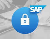 SAP - SAP Security