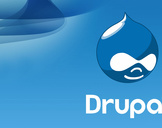 6 Mistakes of a Drupal Web Development Company Will Kill Your Business