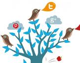 Top Benefits Of Social Media Marketing