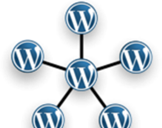 Wordpress Multisites: All You Need to Know