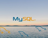 MySQL Database Training for Beginners