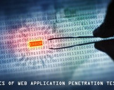 Basics Of Web Application Penetration Testing