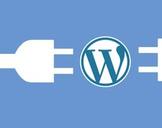 Wordpress Essential Training Hindi