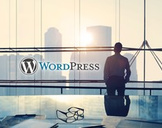 Become A WordPress Web Design Expert Without Any Coding