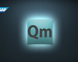 SAP Quality Management - SAP QM - Training Course
