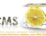 CMS Website Development- Edit Your Website to Save Money