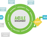 The Importance of Agile Software Development in Newcastle
