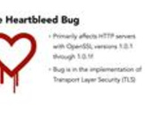 Heartbleed Tactics for Small IT Shops