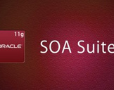 Oracle SOA Suite 11g