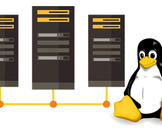 Can Cheap Linux Dedicated Server Hosting Minimize Your Cost?<br><br>