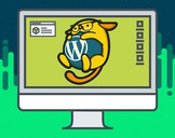 WordPress Development - Themes, Plugins & Single Page Apps