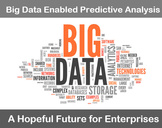 Big Data Enabled Predictive Analysis: A Hopeful Future for Enterprises