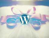 WordPress for Your Wedding Business