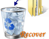 How Can I Recover Deleted Recycle Bin Files?