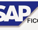 What is SAP FICO Sofware ?