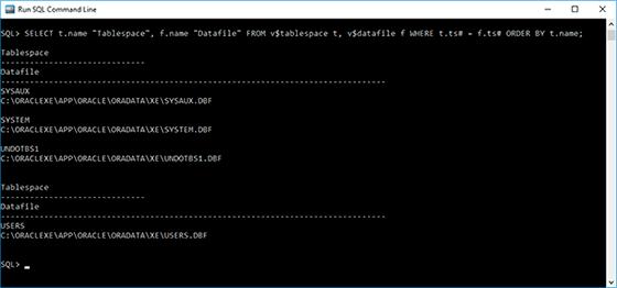 Oracle Database Data: Backup and Restore - Image 1