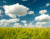 CRM In The Cloud: 4 Signifiers Of A Business Game Changer